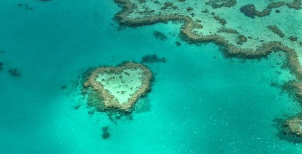 Heart Reef by @chrisvallejos
