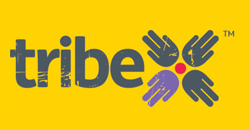 Telstra launches Tribe® social networking tool