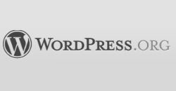 WordPress 3.1.1 released, Security and Performance Improvements