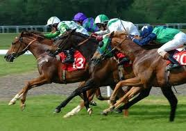 Watch Melbourne Cup 2011 Online